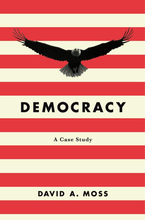 Democracy: A Case Study