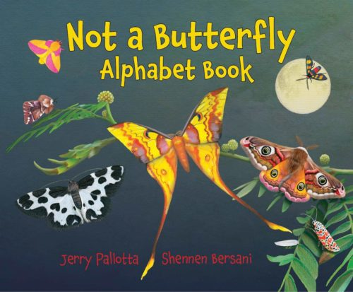 Not a Butterfly Alphabet Book: It's About Time Moths Had Their Own Book!