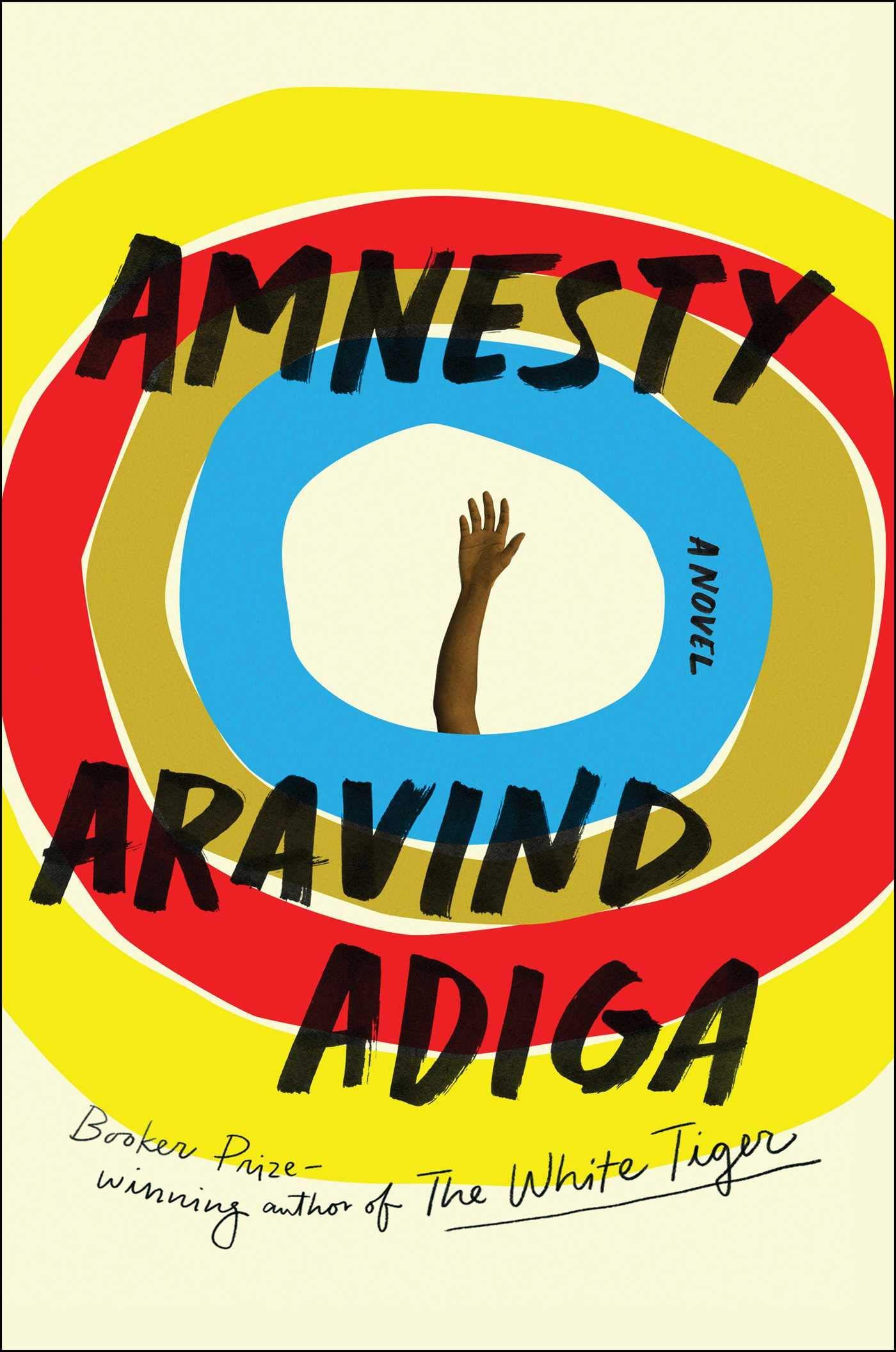 Amnesty: A Novel