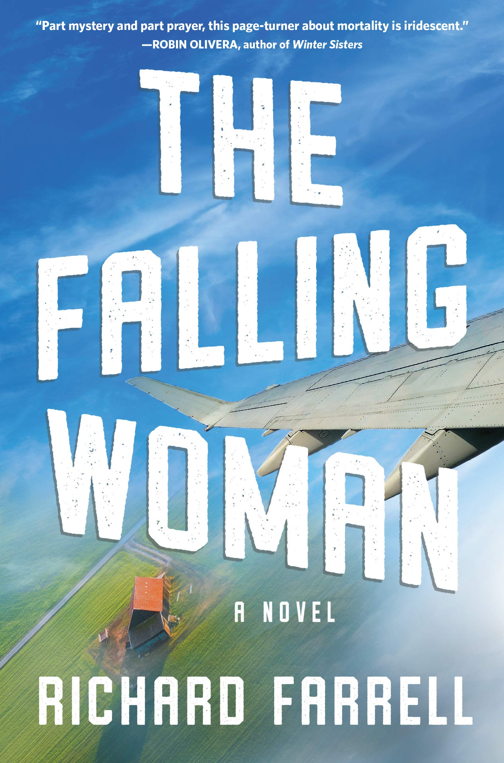 The Falling Woman: A Novel
