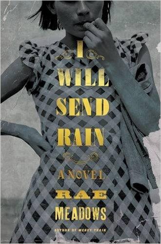 I Will Send Rain:A Novel