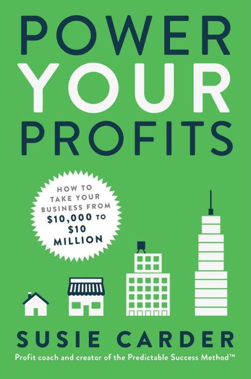 Power Your Profits: How to Take Your Business from $10,000 to $10,000,000