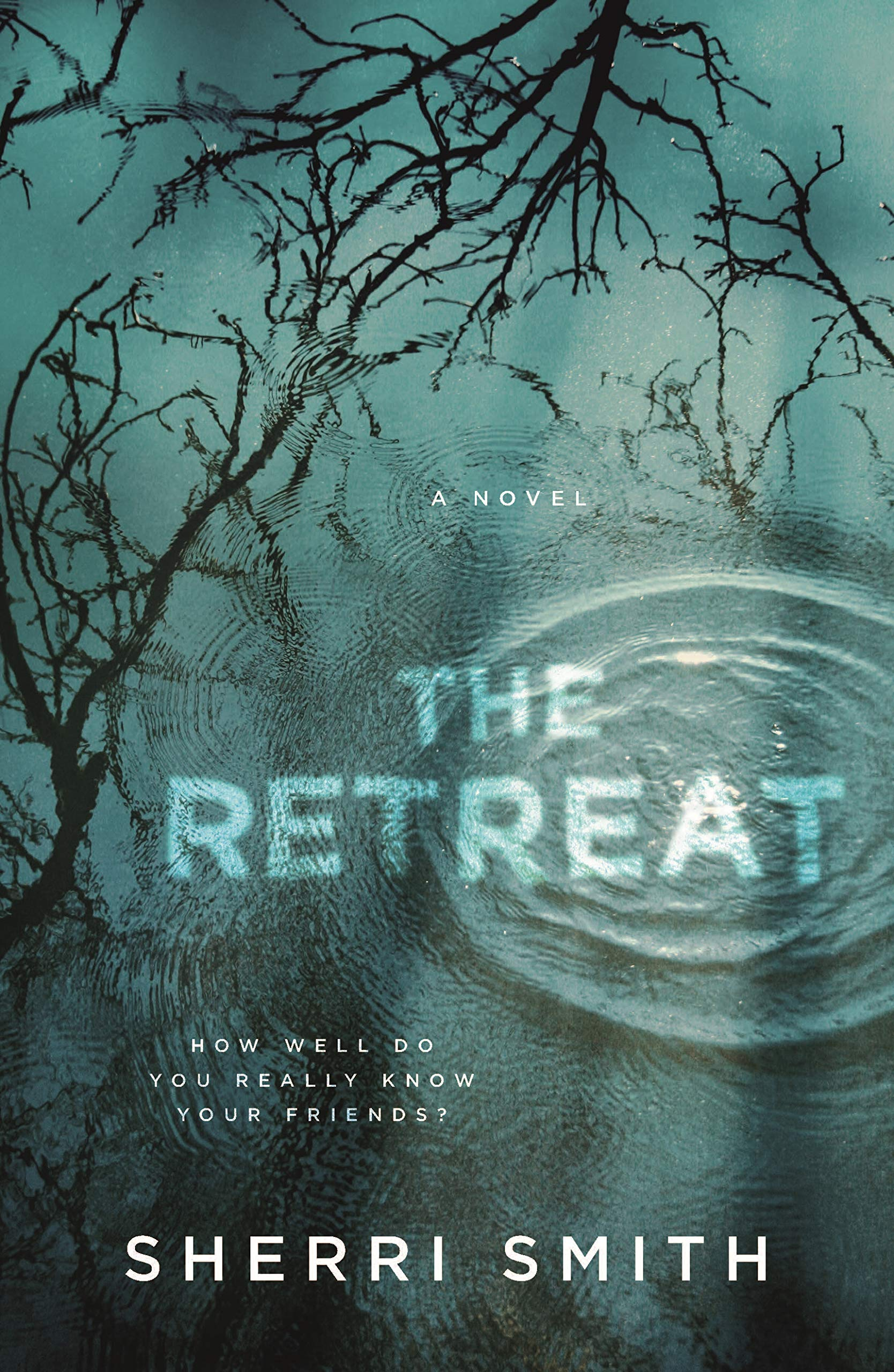 The Retreat: A Novel of Suspense